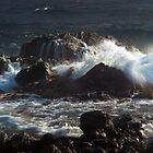 Rocky Shore  by dcdigital