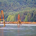 Logging Pilons at Low Tide (Kagan Bay, Haida Gwaii, British Columbia, Canada) by Edward A. Lentz