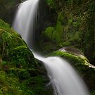 Dolgoch falls 2 by Andy Cork