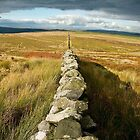 Line Across The Moors by taffspoon