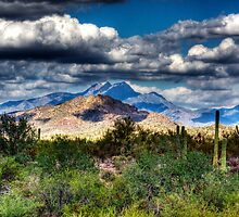 Four Peaks Skyline by George Lenz