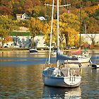 Boats on the Saint Croix in Autumn by Nora Caswell