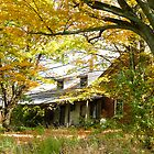 Old Farm House Behind Color by Deborah  Benoit