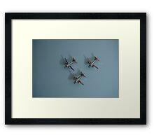 fly on the wall Framed Print