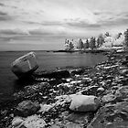 Bayside Boulder - Bar Harbor by David Clayton