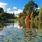 Sheffield Park Gardens by Hertsman