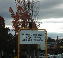 Return those shopping carts, please by AuntieBarbie