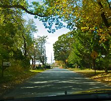 Drive Down Liberty Lane - Fall in Rhode Island by Jack McCabe
