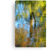 watery  impressions  Canvas Print