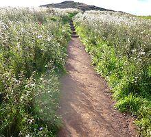 Path to Duddingston by Yonmei