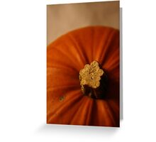 Pumpkin 3 Greeting Card