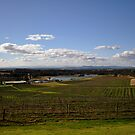 Hunter Valley Vista by petejsmith