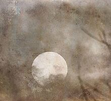 bad moon rising by leapdaybride