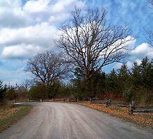 October Drive by nikspix