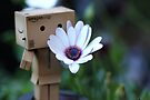 A Flower for You by yolanda