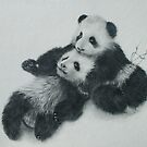Pandas. by jan farthing
