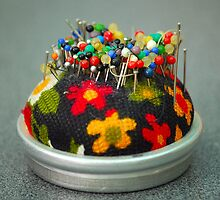 Pincushion by vbk70