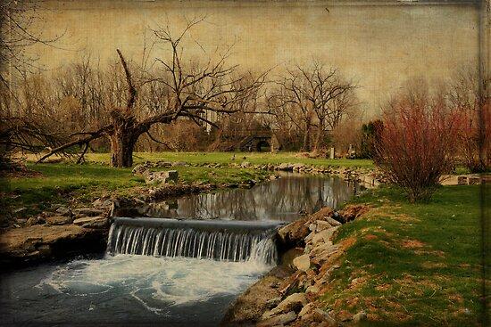 A stream somewhere in Pennsylvania by Jean-Pierre Ducondi