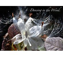 Dancing in the Wind Photographic Print