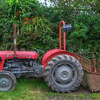 Massey Ferguson at Molland by Rob Hawkins