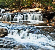 Twighlight Falls by Wanda Dumas