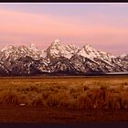 Pink Tetons by jhprints