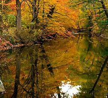 Autumn Reflections by Mark Van Scyoc