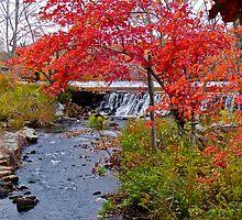 Usquepaug Waterfall - Fall in Rhode Island by Jack McCabe
