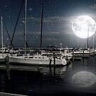 Que Bonita Luna ©  by Dawn M. Becker
