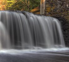 Elegant Cascade by Aaron Campbell