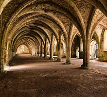 Fountains Abbey Cellarium - Colour by Neal Petts