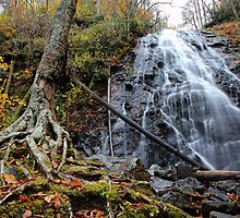 Crabtree Falls by Chris Snyder