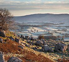 Barbon Low Fell From Newbiggin Crags by SteveMG