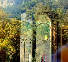 welcome to paradise 221..sintra portugal by Almeida Coval