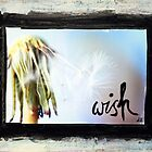 Wish by DanielleQ