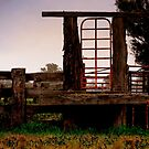 Cattle Gate  by Michelle Crouch