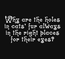 Why are the holes in cats' fur always in the right places for their eyes? by digerati