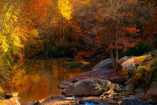 Fall Reflections by Jeanne Sheridan