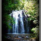 Elinjaa Falls - FNQ - Australia by Vanessa Barklay