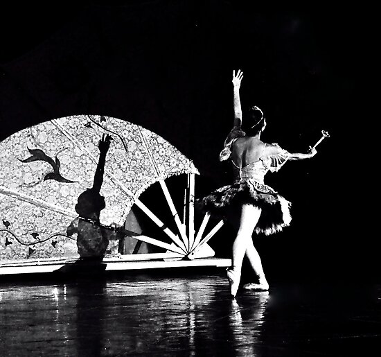 Shadow Dancing (B&W) by Valerie Rosen