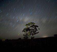 Strar Trail 2 by Cindy McDonald
