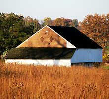 Trostle Barn in Autumn by AngieDavies