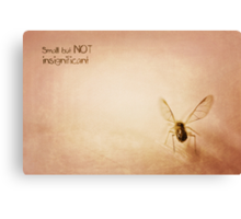 ~ Small, but NOT insignificant ~ Canvas Print