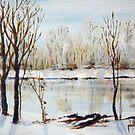 Half Frozen by Jim Phillips
