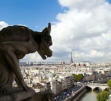 Cimera of Notre-Dame - Paris, France  by Dev Wijewardane