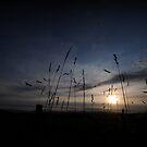 australian sunrise by Tamara Cornell