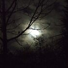 Sleepy Hollow by dawnandchris