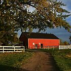 Barn in evening sun by tanmari