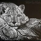 Snow Leopard Scratchboard by Chris Perry