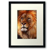 The Lion King Framed Print